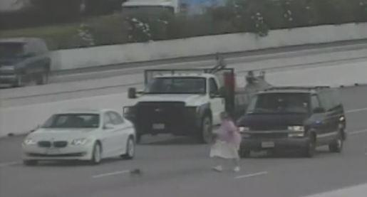Pour rattraper son chat, elle bloque une autoroute