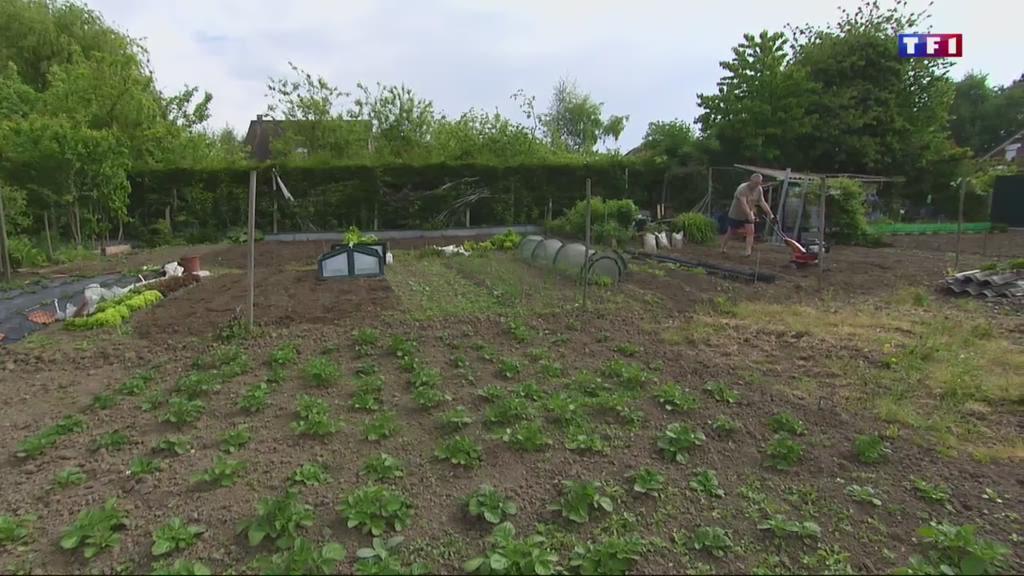 Saints de glace : les jardiniers vont enfin pouvoir se lâcher