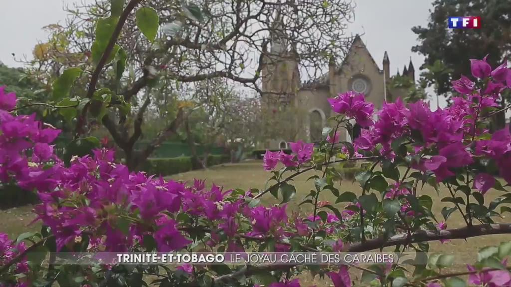 Trinité-et-Tobago, du paradis perdu de Robinson Crusoé au paradis touristique