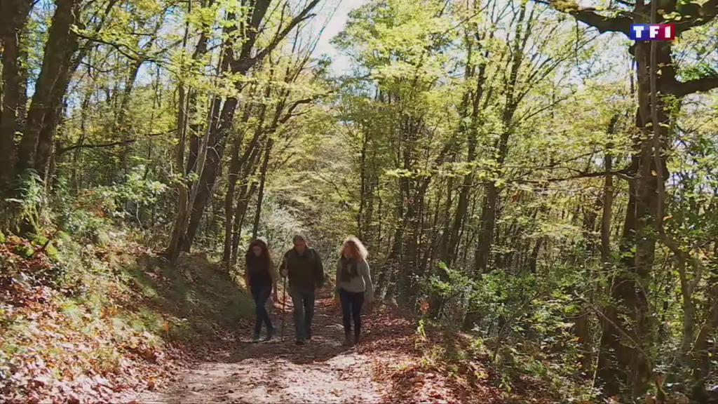 Les gorges de la Dordogne offrent des paysages spectaculaires à l'automne
