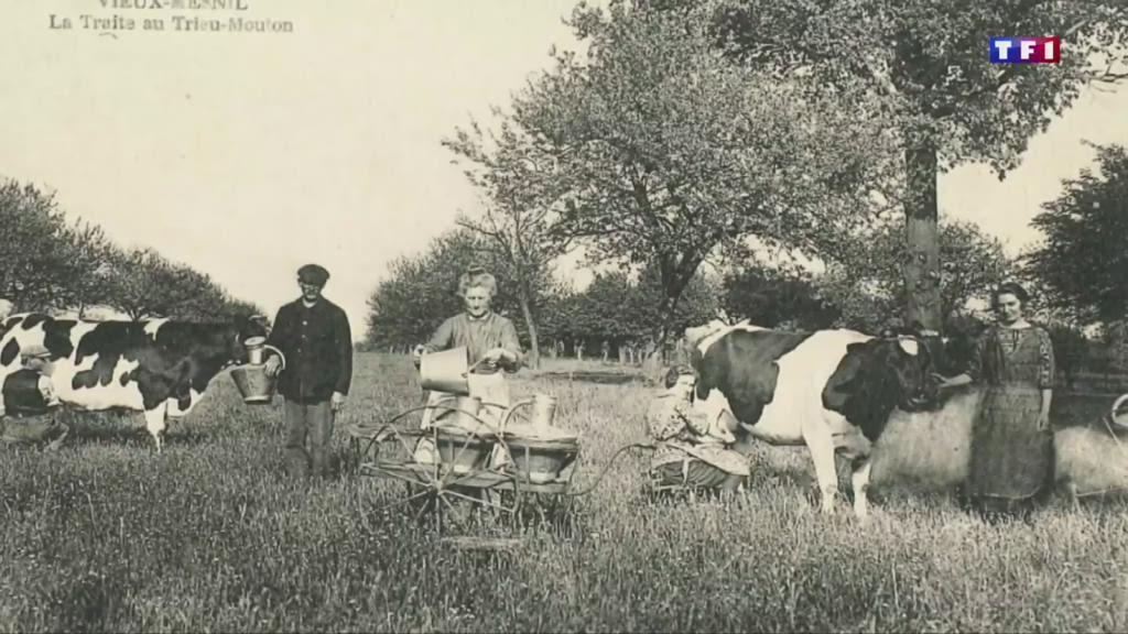 Vieux-Mesnil, un village où les girouettes ont une signification particulière